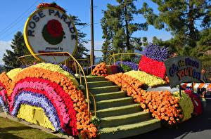 Фотография Штаты Розы Калифорнии Дизайна Лестницы Rose Parade Pasadena Цветы