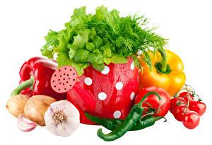 Обои Овощи Чеснок Лук репчатый Перец Томаты Острый перец чили Укроп Белом фоне