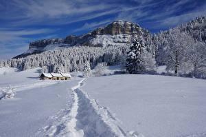 Фотография Зима Здания Леса Горы Пейзаж Снега Тропинка Утес Природа