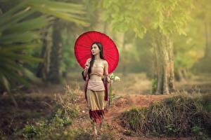Обои Азиаты Ходьба Брюнетки Зонт Девушки