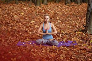 Фото Осень Поза лотоса Блондинки Сидит Йогой Девушки