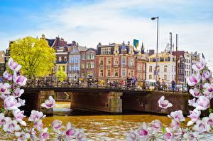Фотографии Мосты Нидерланды Амстердам Дома Речка