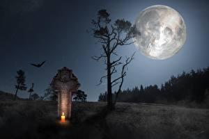 Обои Свечи Черепа Готические Ночные Деревья Крест Луна