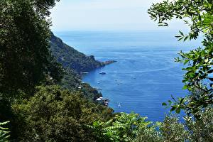 Обои Побережье Италия Море Лодки Ветки Liguria