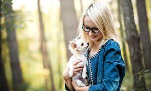 Фотография Собака Очки Блондинка Чихуахуа Улыбка молодая женщина Животные