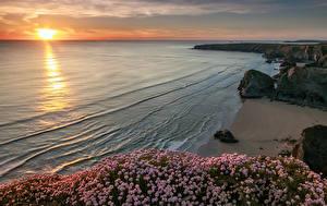 Обои Англия Побережье Рассветы и закаты Камень Кустов Песок Lundy Bay Природа
