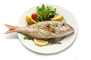 Фотографии Рыба Лимоны Белым фоном Тарелке Еда