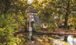 Фотографии Франция Парки Пруд Деревья Saint-Pryvé-Saint-Mesmin