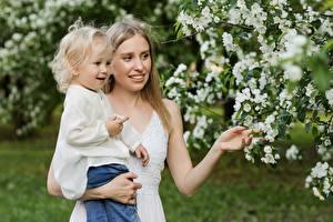 Фотографии Сады Цветущие деревья Мама Вдвоем Девочка Девушки Дети