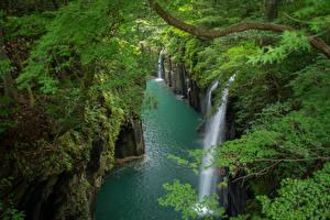 Картинка Япония Реки Водопады Скале Ветки Takachiho Gorge Природа