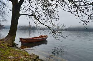 Фото Озеро Лодки Словения На ветке Туман Bled lake Природа