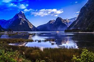 Фотография Горы Новая Зеландия Скалы Траве Fiordland national Park, Milford Sound, Mitre Peak, fjord Природа