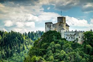 Картинки Польша Замок Леса Горы Castle In Niedzica, Pieniny mountains Природа