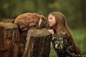 Фотографии Кролики Шатенки Девочки Пне Julia Kubar ребёнок