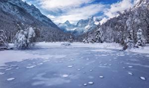 Фотографии Пейзаж Горы Леса Зима Озеро Словения Снега Альп Kranjska Gora Lake Jasna Julian Alps Природа