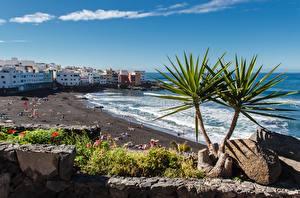 Картинка Испания Курорты Камни Дома Пляжа Tenerife, Puerto de La Cruz Города