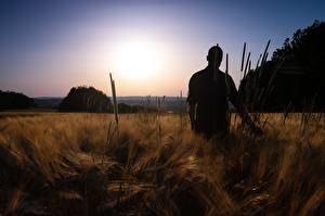 Обои Рассветы и закаты Поля Мужчины Силуэт Природа