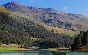 Картинки Швейцария Горы Озеро Леса Lake Silvaplana, Engadine, Canton of Graubünden Природа