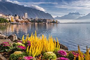 Фотография Швейцария Гора Озеро Камень Дома Montreux, lake Geneva город Природа