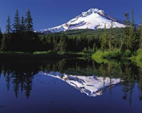 Обои Штаты Озеро Горы Леса Снега Mount Hood, Oregon Природа