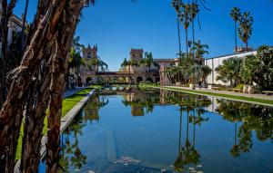 Обои Америка Парк Здания Пруд Сан-Диего Пальма Balboa Park Природа