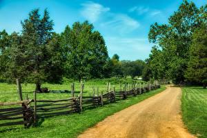 Картинка США Дороги Трава Ограда Дерево New Jersey