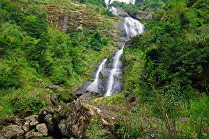 Картинки Вьетнам Водопады Камни Скалы Кустов Sapa Природа