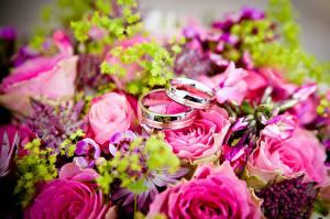 Обои для рабочего стола Букет Розы Крупным планом Кольцо Золотой Два Цветы