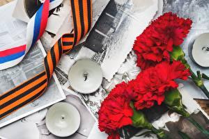 Обои для рабочего стола Гвоздика 9 мая Свечи Красный цветок