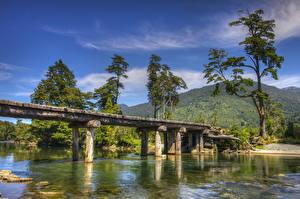 Фотография Чили Речка Мост Горы Деревьев Patagonia Природа