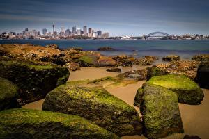 Картинки Побережье Камень Мост Австралия Залив Сидней город