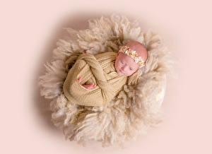 Фото Цветной фон Младенцы ребёнок