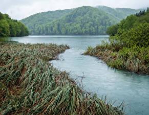Фотография Хорватия Парки Озеро Горы Траве Plitvice Park Lake Природа