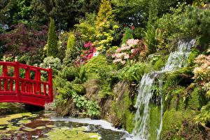 Картинка Англия Сады Пруд Водопады Мост Скала Кустов Mount Pleasant Gardens Chester Природа