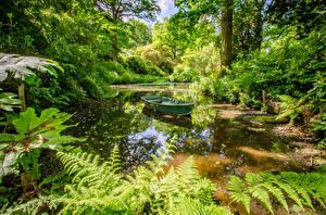 Картинки Англия Парки Пруд Лодки Ramster Gardens Surrey Природа