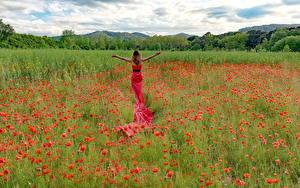 Картинки Поля Маки Платья Цветы Девушки Природа