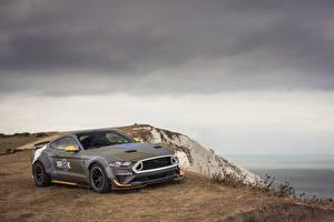 Фотографии Ford 2018 Mustang GT Eagle Squadron Автомобили