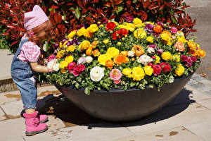 Фотографии Германия Парк Лютик Много Куклы Девочка Grugapark Essen Цветы