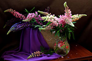 Картинка Люпин Ваза Цветы