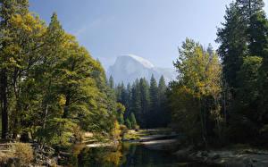 Картинки Парк Осенние Река Леса Штаты Йосемити Калифорния Sierra Nevada mountains, Mariposa County Природа
