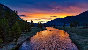 Фотография Парк Америка Рассвет и закат Гора Леса Река Пейзаж Йеллоустон Wyoming, Yellowstone River Природа