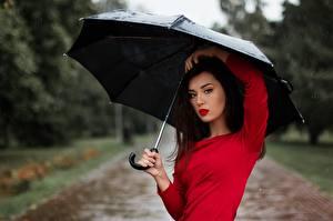 Обои Дождь Зонт Брюнетка Взгляд Девушки