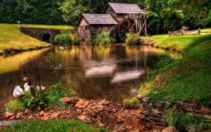 Фото Речка Гусь Траве Водяная мельница