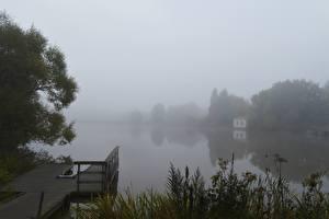 Картинки Реки Утро Пирсы Финляндия Туман Траве River Aura
