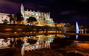Фотографии Испания Мальорка Майорка Храмы Церковь Реки Дома Ночные Отражение Catedral La Seu город