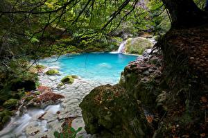 Картинки Испания Мха Ручеек Navarra Природа