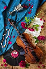 Картинка Натюрморт Скрипки Ноты Розы Украшения Лепестков Бокалы цветок