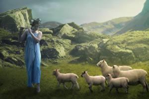 Обои Камни Овцы Трава Стадо Венок Фэнтези Девушки