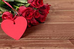 Фото День святого Валентина Роза Сердечко Шаблон поздравительной открытки Доски Красные цветок
