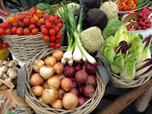 Фотографии Овощи Лук репчатый Помидоры Грибы Зелёный лук Корзинка